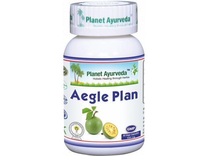 Aegle Plan