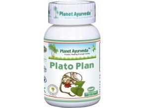Plato Plan