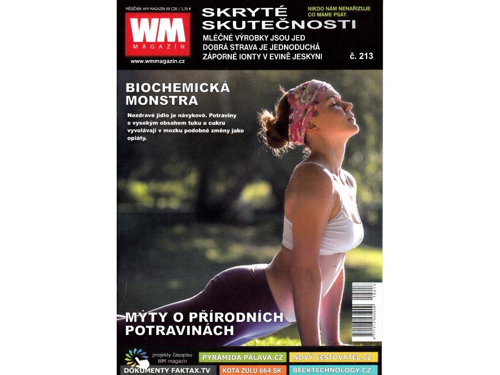 WM 213