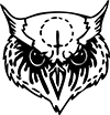 Owl boards store