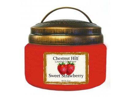 10 oz Sweet Strawberry