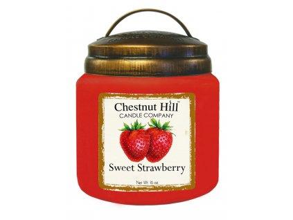 16 oz Sweet Strawberry