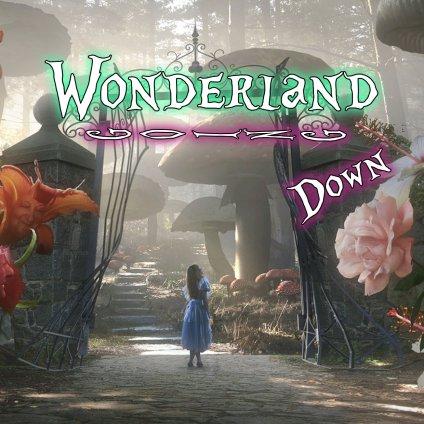 Wonderland going down7