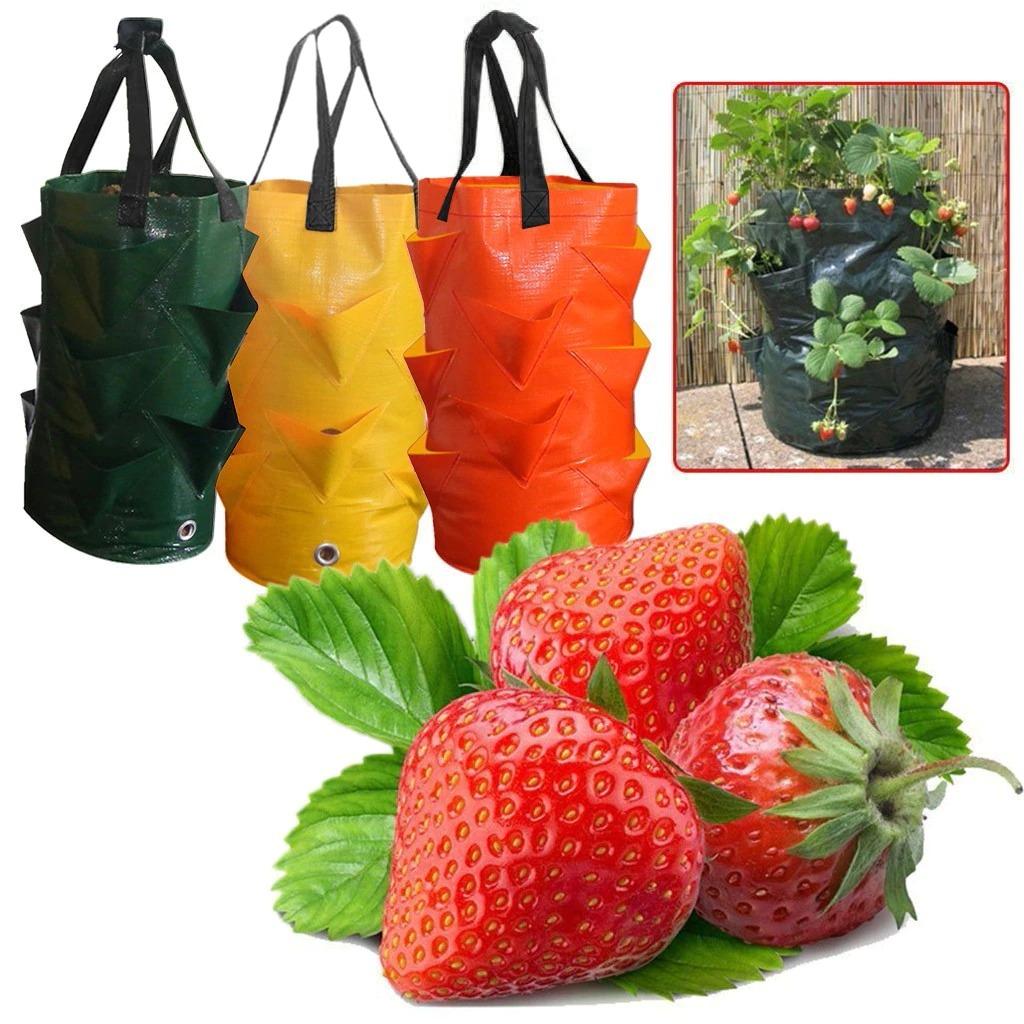 plant-growth-bag-multi-port-strawberry-p_main-0