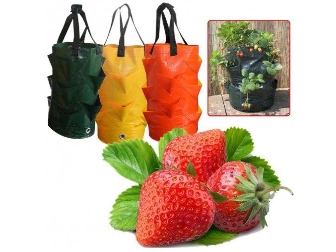 plant growth bag multi port strawberry p main 0