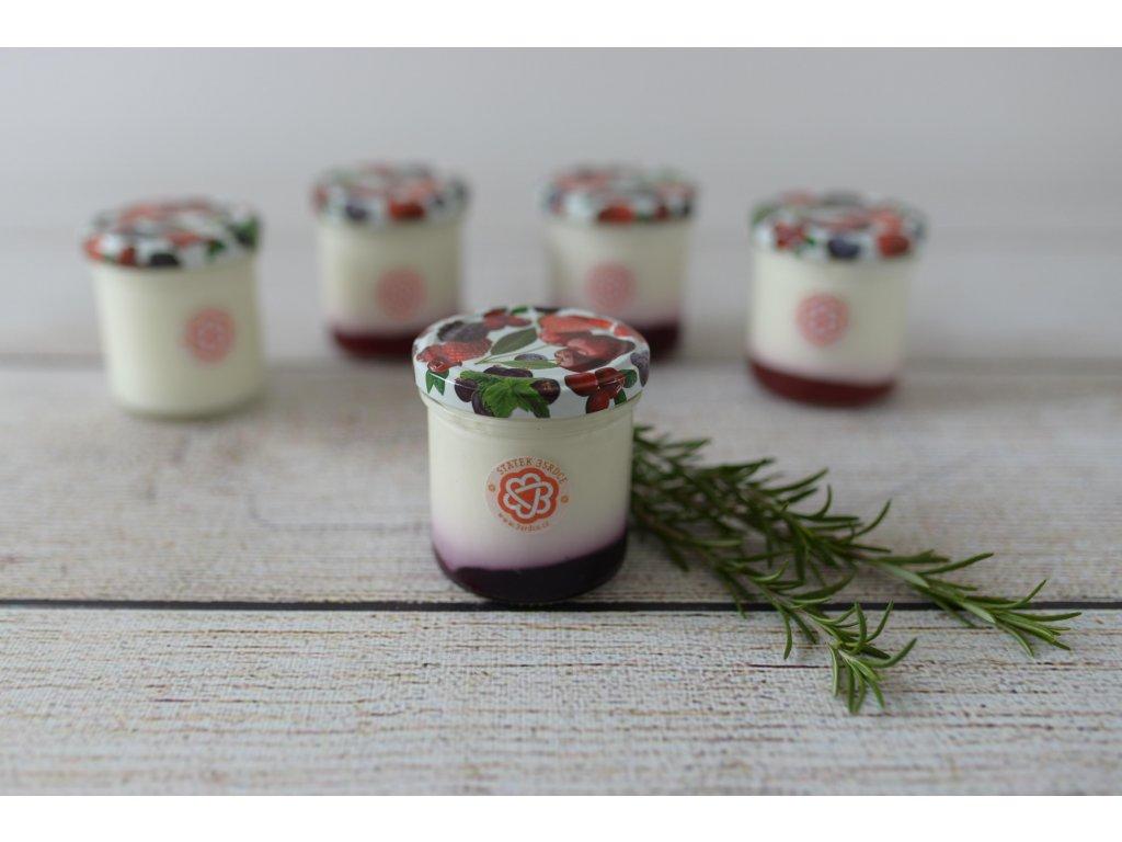 Jogurt borůvkový