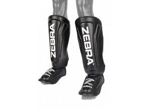 zebra nohy