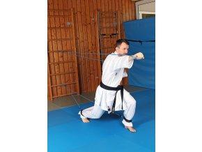 Karate FER WEB