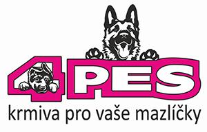 4pes.cz