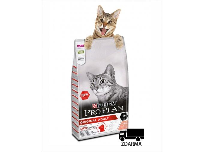 purina cat