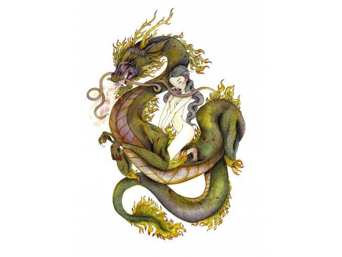dragonpwr eshop