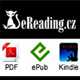 Elektronické knihy e-book