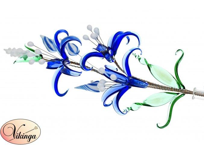 květina modrá