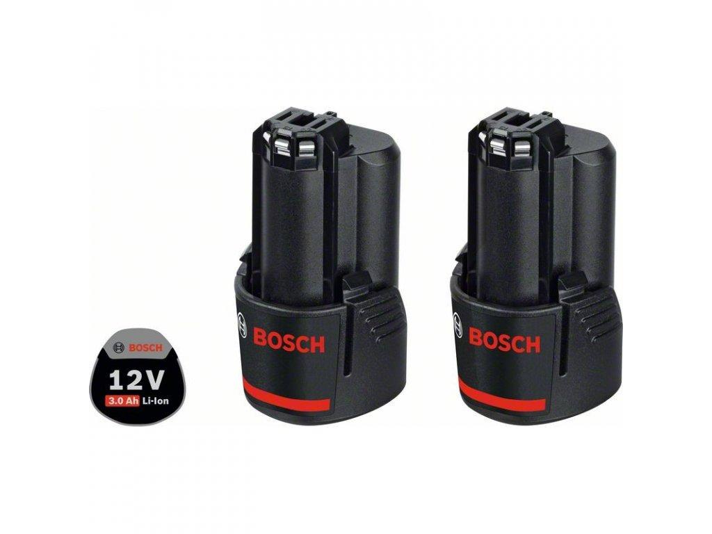 220851 4 akumulator 2 gba 12v 3 0ah professional 1600a00x7d