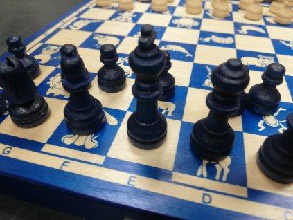 Šachová souprava+dáma pro děti