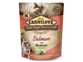 Carnilove Dog Pouch Paté Salmon and Blueber Puppies 300g na aaagranule