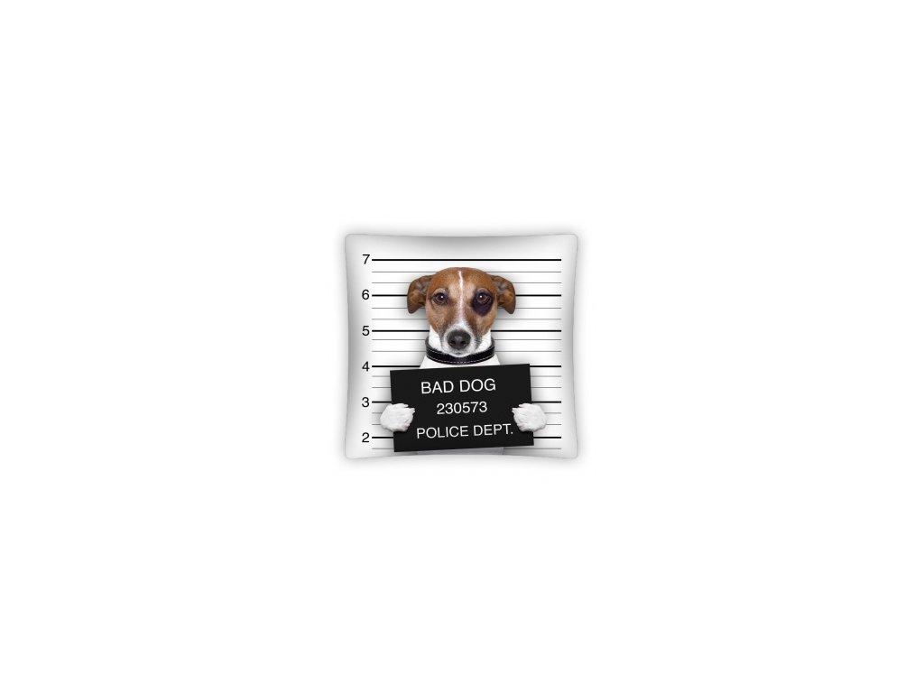 Polštář BAD DOG PS0006 40x40cm
