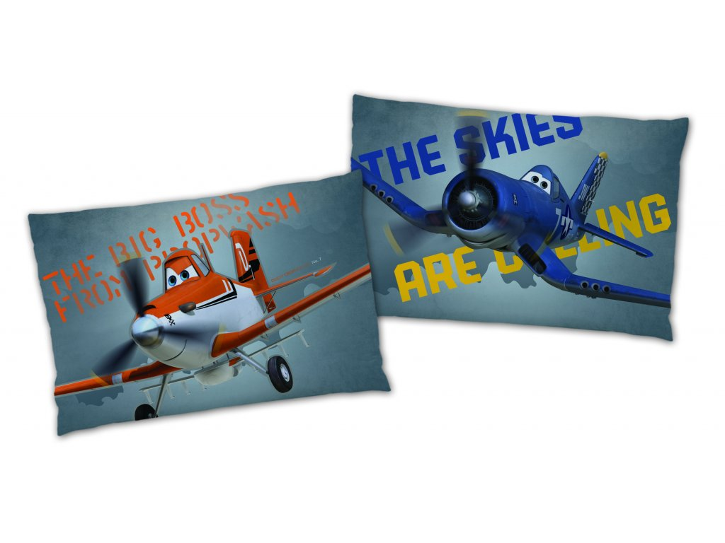 PLANES OWN ON THE SKY coussin 28x42
