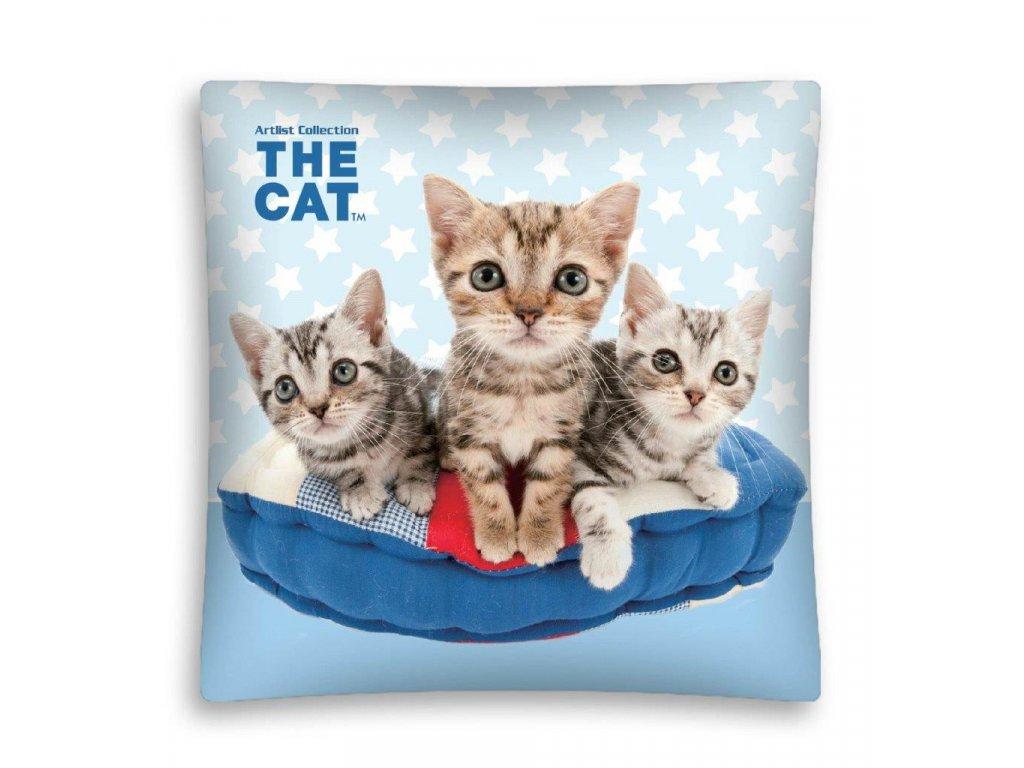 CAT 05 MF