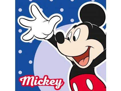 Ręcznik magiczny 30x30 Mickey 033 EAN 5907750548644