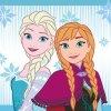 Ręcznik magiczny 30x30 Frozen 054 EAN 5907750548613