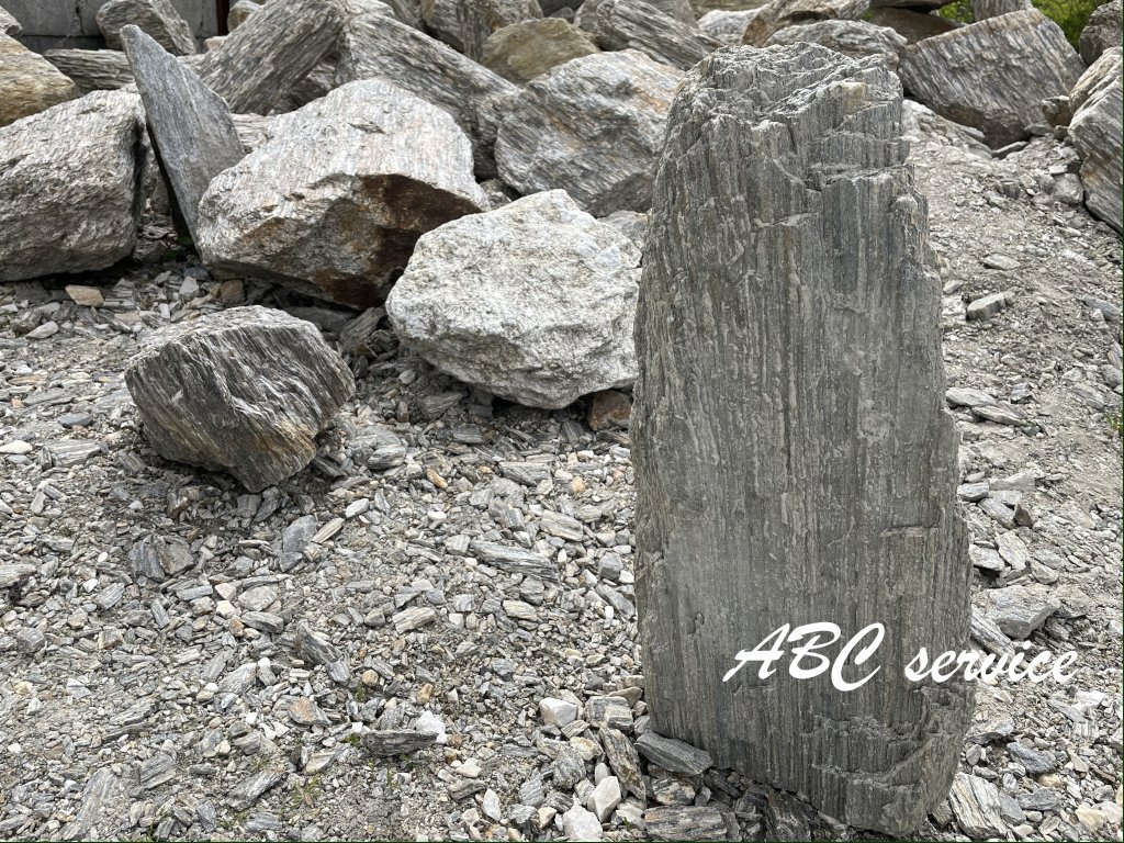 zkamenele drevo 10 50cm 1024x768