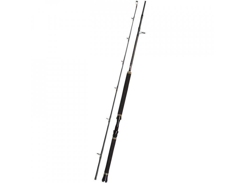 PENN Regiment II Popping Spin 2,4m 50-100g
