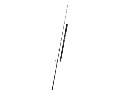 PENN Regiment II Tuna 2,4m 80lb