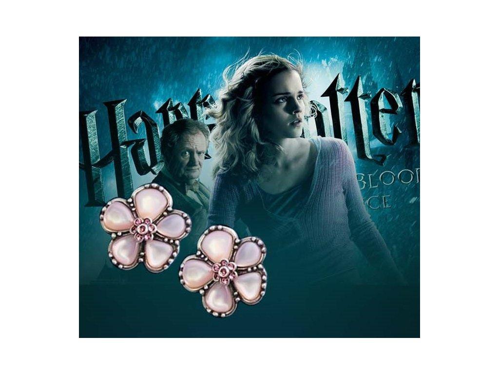 11300 harry potter nausnice hermiona