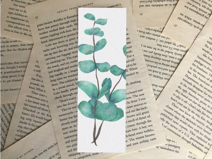 Záložka: eukalyptus