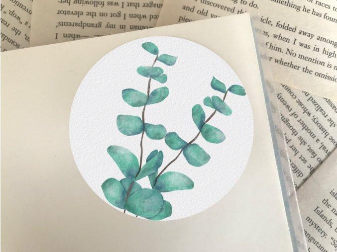 Nálepka: eukalyptus