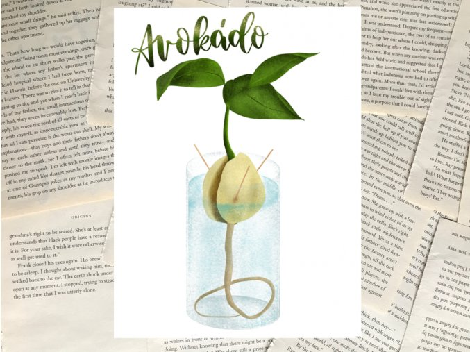 Art print: avokádo