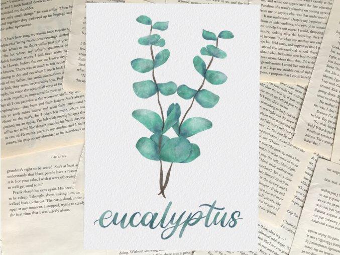 Art print: eukalyptus