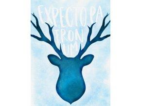 Art print: Expecto patronum  Art print z magického boxu inspirovaného světem Harryho Pottera