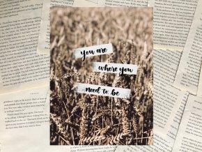Art print: where you need to be
