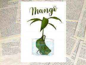 Art print: mango