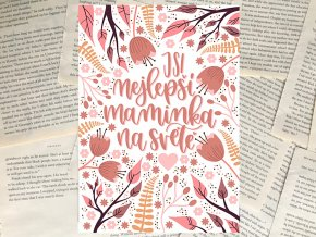 Art print: Jsi nejlepší maminka na světě