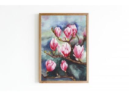 magnolie obraz