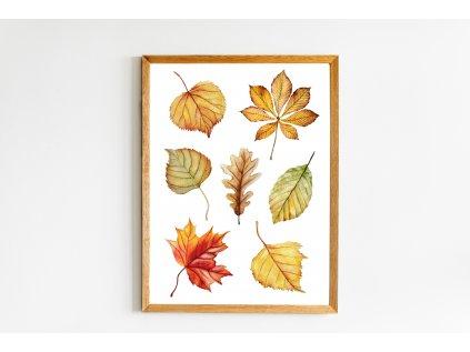 Podzimní listy
