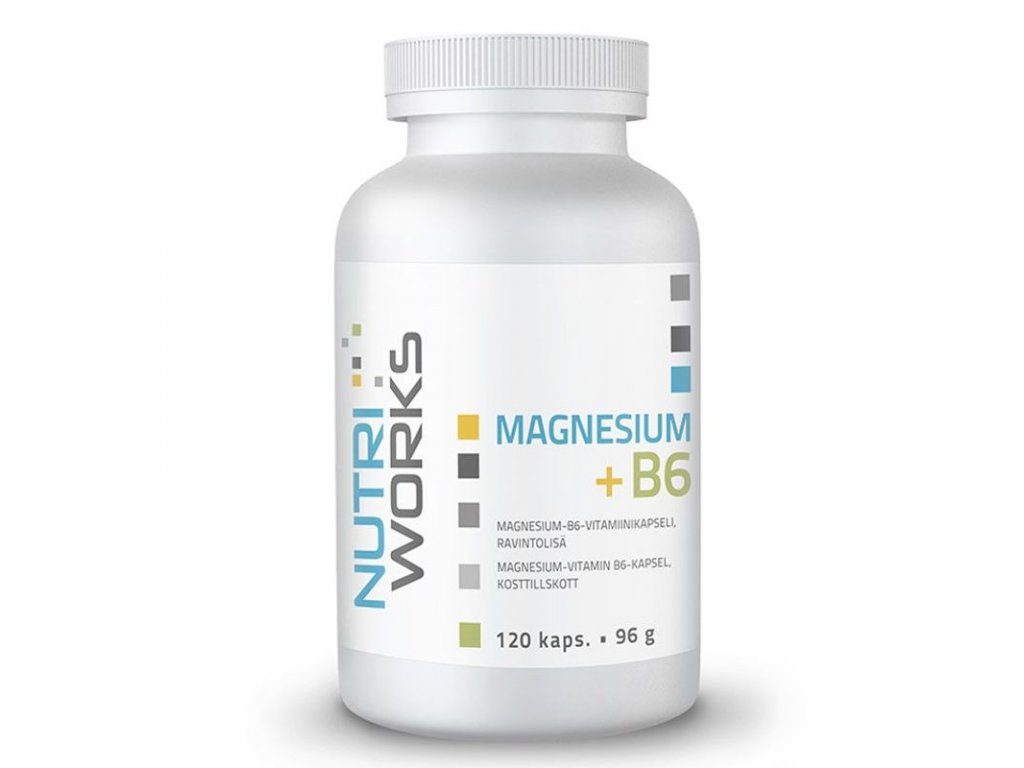 Magnesium + B6 120 kapslí