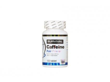 Caffeine Fair Power 900x600 1 900x600