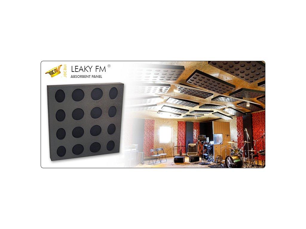 Leaky6