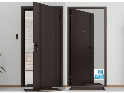 Vchodové dveře DoorHan ECO Antracit