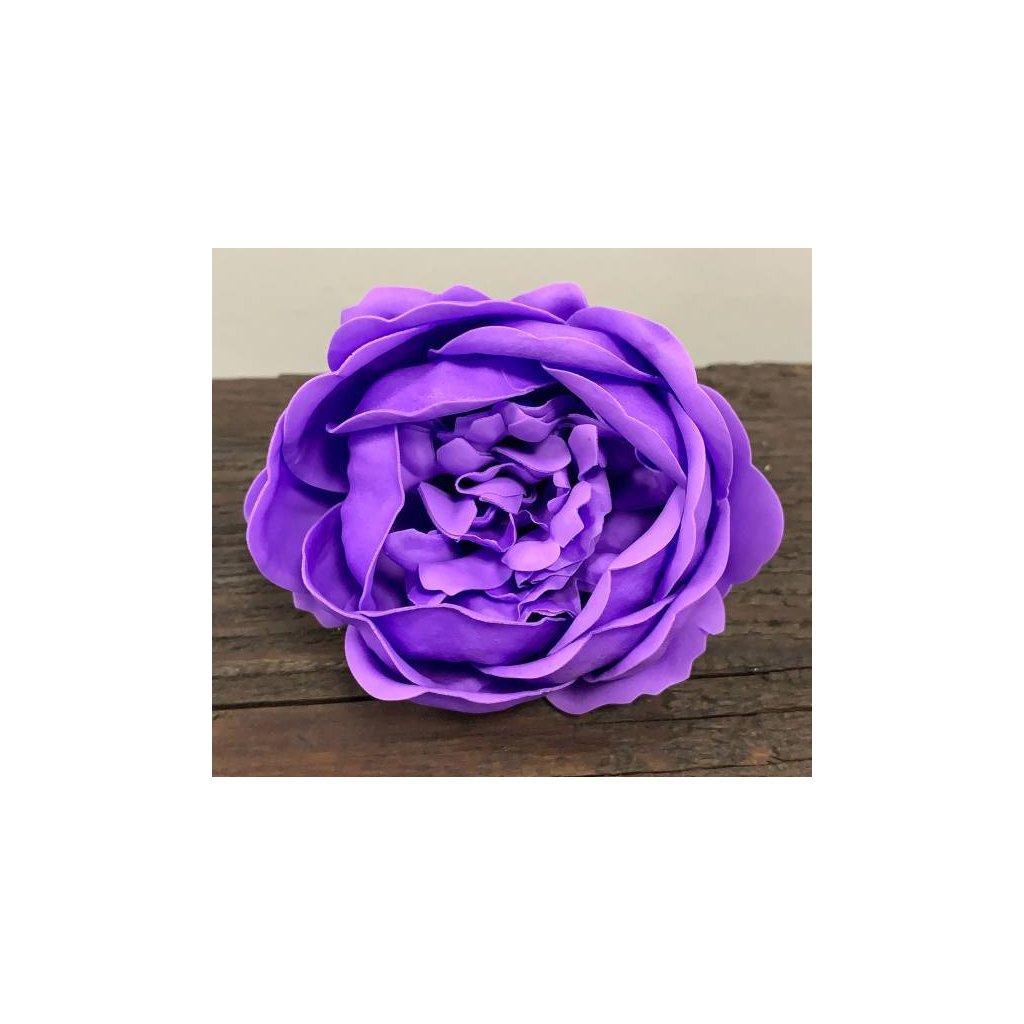 Mýdlový květ levandule