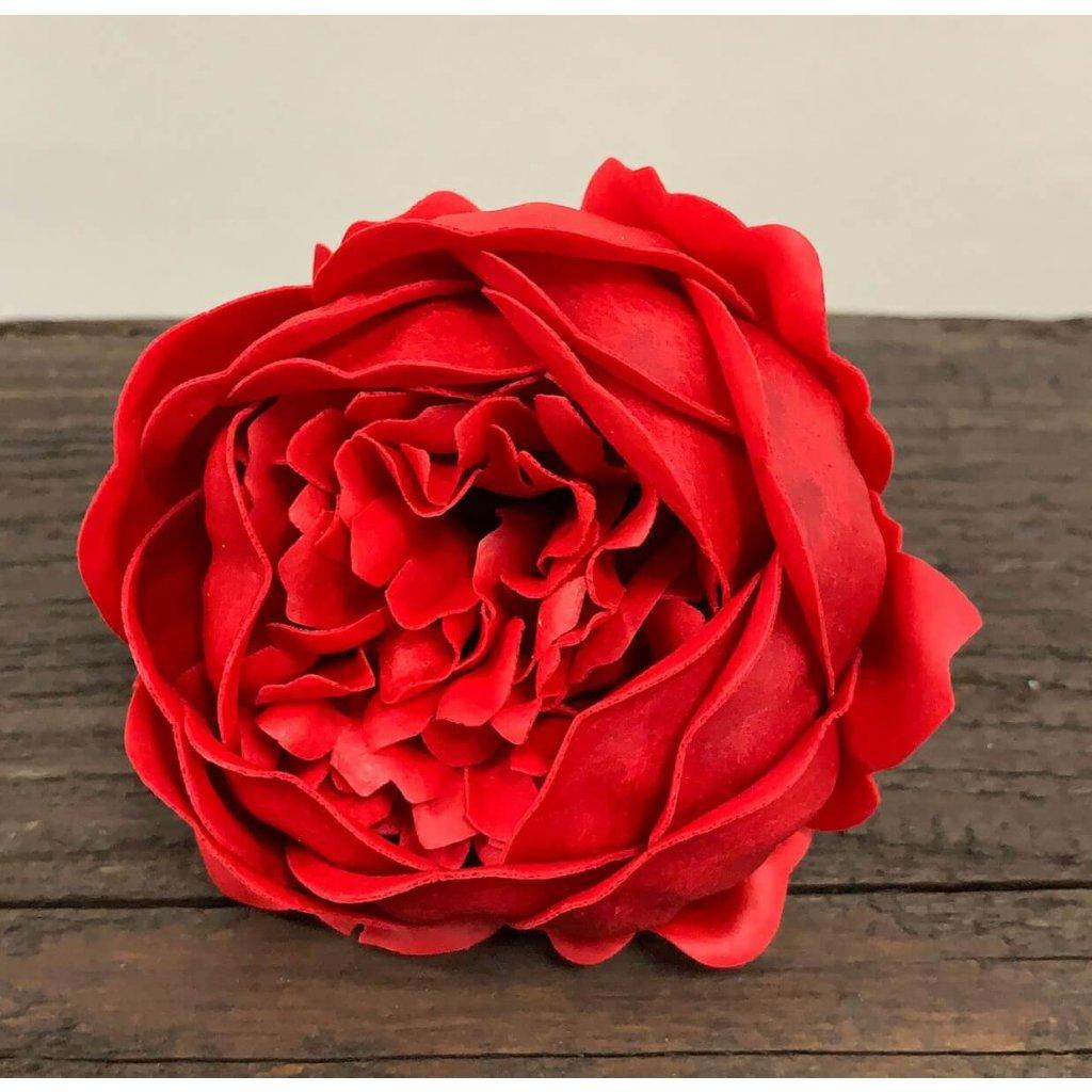 Mydlový kvet pivonka, červená