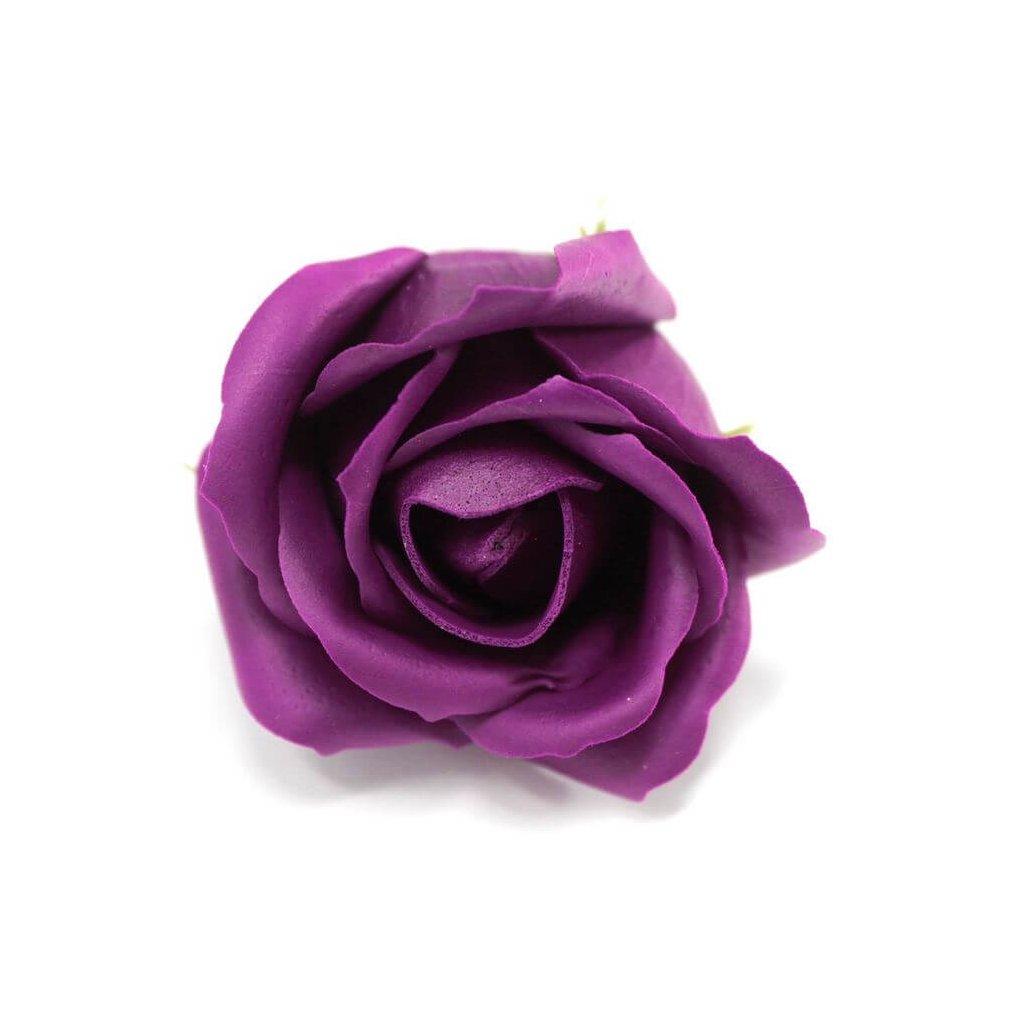 Mýdlový květ růže fialový
