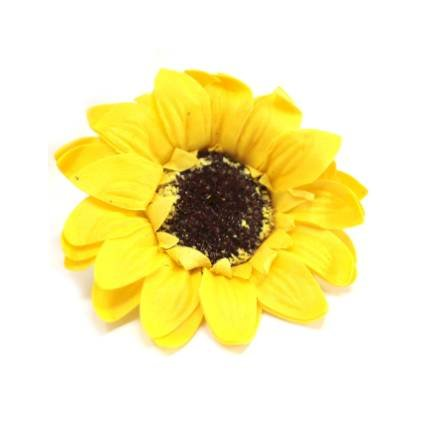 Mýdlový květ slunečnice