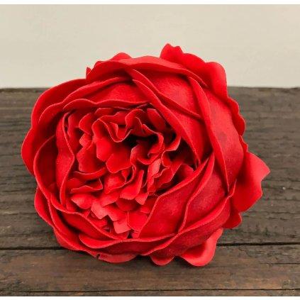 Mýdlový květ pivoňka červená