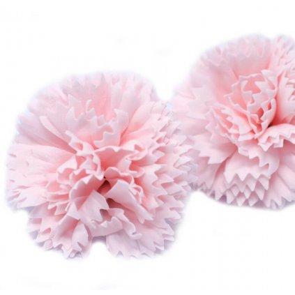 Mydlový kvet karafiát, ružový