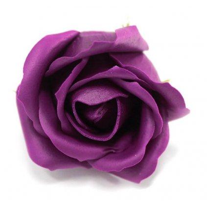 Mydlový kvet ruže, fialový